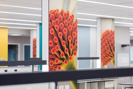 Middlemore Hospital using digitally printed Fundermax wall lining HPL panels
